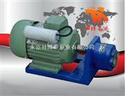 S型-永嘉县海坦牌生产 S型微型齿轮输油泵