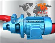 1W型-永嘉县海坦牌生产 1W型单级旋涡泵