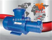 温州海坦牌价格 CWB型磁力驱动旋涡泵