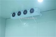冷库出租-果蔬冷库安装建造-上海冷藏库-冷冻冷库出租-松江低温冷库出租