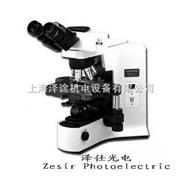 双目显微镜BX41-12P02 奥林巴斯