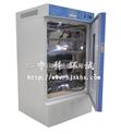 -10℃低温恒温箱/-20℃低温试验箱/北京低温培养箱
