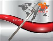 温州海坦牌生产 YBYB型手提式电动油桶泵