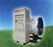濟南供應WDR電熱水鍋爐