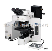 奥林巴斯BX51/61正置显微镜 400倍光学显微镜报价