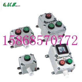 LA53防爆控制按钮LA53-1 LA53-2 LA563-3  LA53-2A