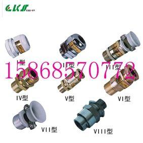 防爆电缆夹头BDM-VI-G1/2