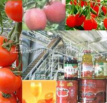 果蔬生產線