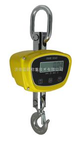 OCS-XZ-GGC-PRO直視電子吊秤