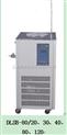 上海巖征80L低溫循環泵