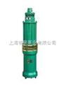 型清水清水电泵