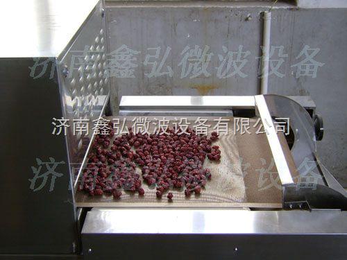 内蒙古大枣干燥杀菌设备/微波大枣烘干杀菌设备--鑫弘微波干燥设备