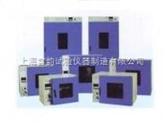 鼓风干燥箱/DHG-9420A干燥箱/上海立式鼓风干燥箱