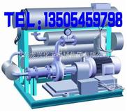 WDR系列电加热导热油炉
