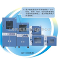 鼓风干燥箱/恒温试验箱 电热鼓风干燥箱 电热恒温鼓风干燥箱 数显鼓风干燥箱