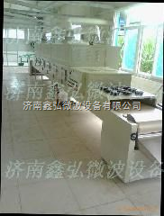 上海微波坚果干燥设备