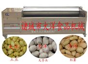 毛刷式芋头剥皮机、地瓜去皮机、土豆脱皮设备