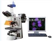 北京尼康显微镜,尼康90i荧光显微镜