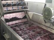 蓝莓酱生产线价格