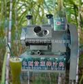 电动甘蔗榨汁机,生姜榨汁机,甘蔗机