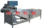 1000供应蔬菜清洗机(流水线)