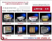 南京冰柜,拉薩臥式冰柜,淮南立式冷柜