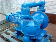 DBY65-化工专用隔膜泵,工程塑料材质,不锈钢材质,隔膜泵专家,厂家