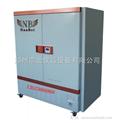 黔南BSP系列生化培养箱,BSP系列生化培养箱厂家
