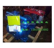 柴油机隔膜泵