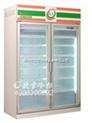深圳欧雪冷柜价格|冷柜售后