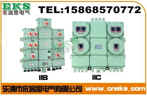 BXM51防爆照明配电箱(IIB、IIC、DIP)