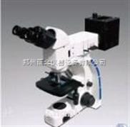 UMT200i透反射金相显微镜 生产厂家