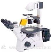 AE30/31+荧光显微镜 生产厂家