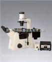 DSY5000X倒置荧光显微镜 生产厂家