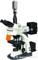 BM-21AYV摄像型落射荧光显微镜 生产厂家