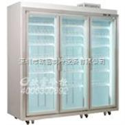 上海3门展示冰柜  品牌冰柜