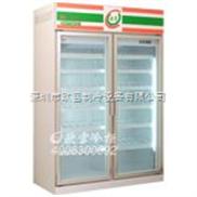上海KTV冰柜定做 小型冰柜
