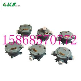 FHD-G1/2C/220V防水防尘三通接线盒