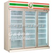 做大型冰柜的公司|珠三角哪里Z多大冰柜卖