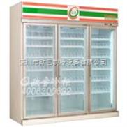 上海可口可樂冰柜|飲料冰柜