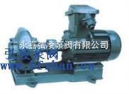 2CY系列齿轮式润滑泵,防爆油泵,不锈钢齿轮泵