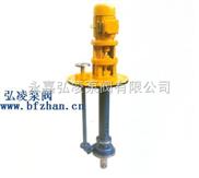 BFY型保温液下泵,耐腐蚀液下泵,立式液下泵