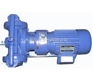 DP系列微型隔膜泵,电动隔膜泵,塑料隔膜泵