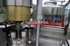 植物蛋白饮料生产线/易拉罐饮料灌装机/枇杷汁饮料生产线