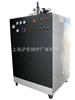 150kw电蒸汽锅炉