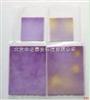 20份/盒食品大肠菌群检测纸片 食品大肠菌群测试片
